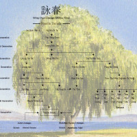 Willow-tree-Lineage1
